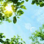 紫外線の影響と日焼け対策